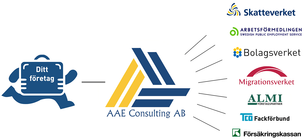 AAE Consulting partners